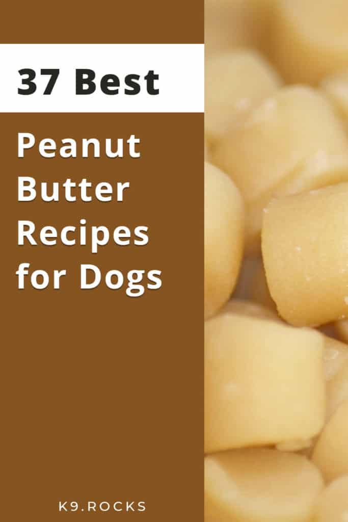 most dogs loves peanut butter, in this blog post we have covered 32 different recipes