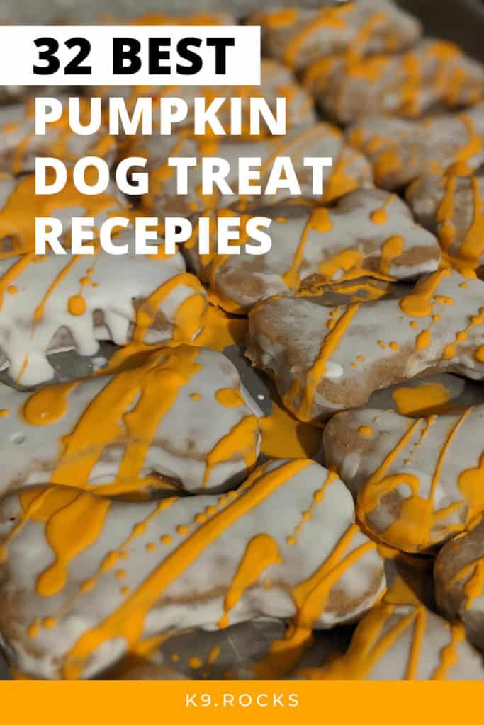 pumpkin is good for a dogs health because of its nutrition vitamins it contains we have gathered all the best pumpkin recipes on the interenet