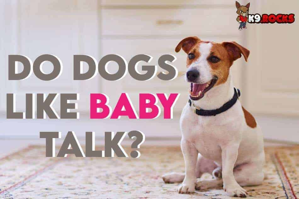 Do Dogs Like Baby Talk?