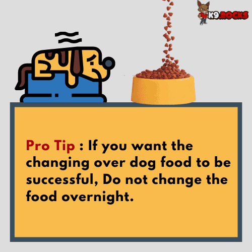 If you want the changing over dog food to be successful, do not change the food from one day to the next abruptly.