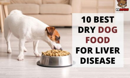 10 Best Dry Dog Food for Liver Disease