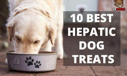10 Best Hepatic Dog Treats
