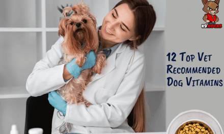 12 Top Vet Recommended Dog Vitamins