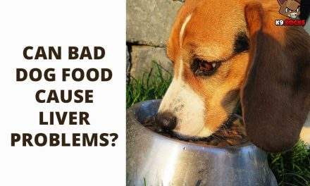 Can Bad Dog Food Cause Liver Problems?