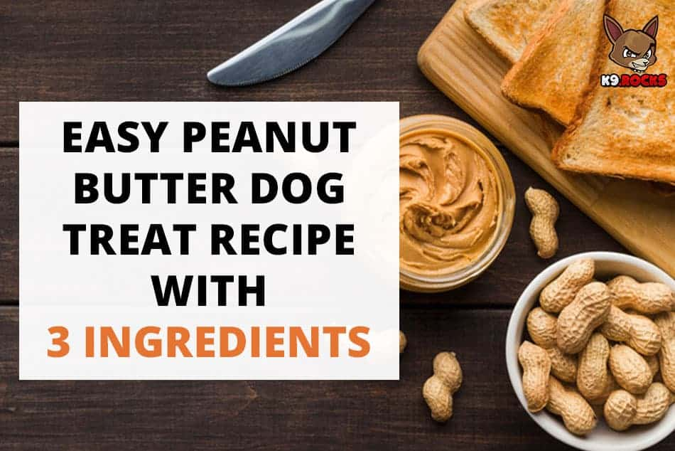 Easy Peanut Butter Dog Treat Recipe with 3 Ingredients
