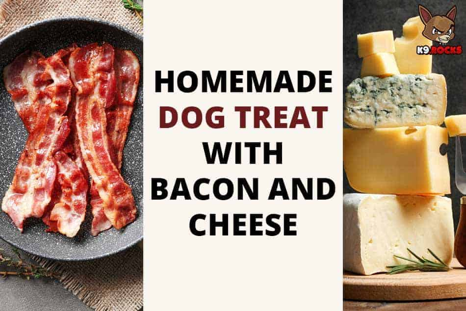 Homemade Dog Treat with Bacon and Cheese