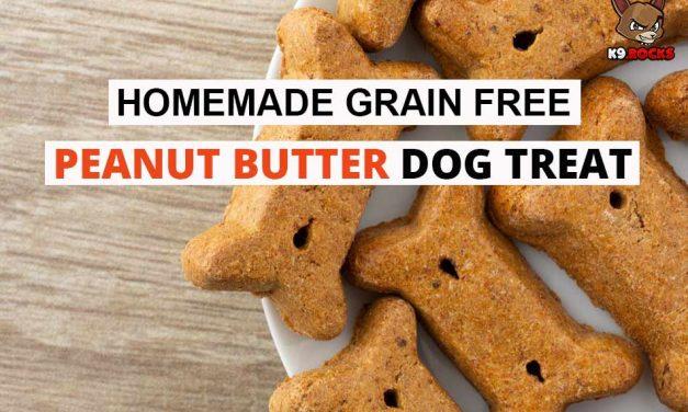 Homemade Grain Free Peanut Butter Dog Treat