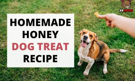 Homemade Honey Dog Treat Recipe