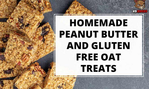 Homemade Peanut Butter and Gluten Free Oat Treats