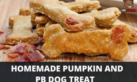 Homemade Pumpkin and PB Dog Treat