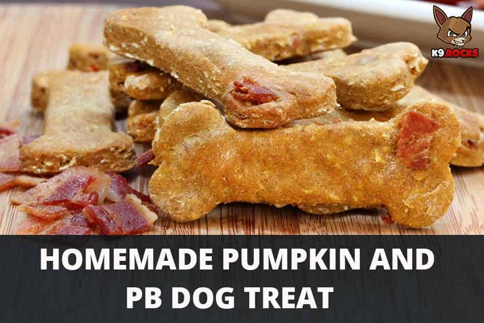 Homemade Pumpkin and PB Dog Treat