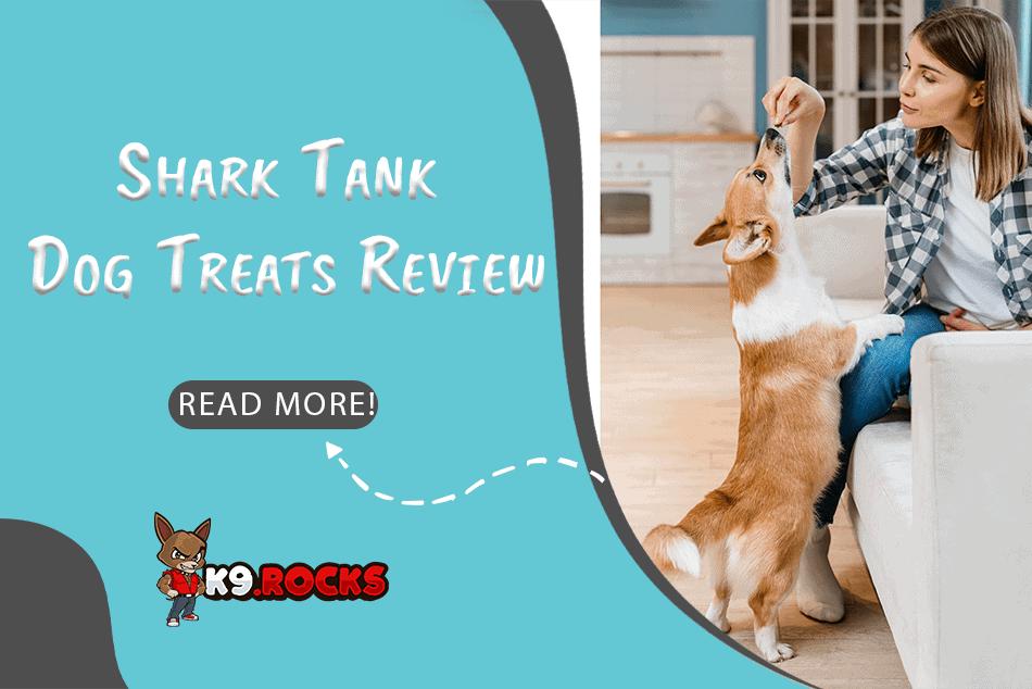 Shark Tank Dog Treats Review