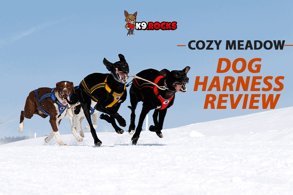 Cozy Meadow Dog Harness Review