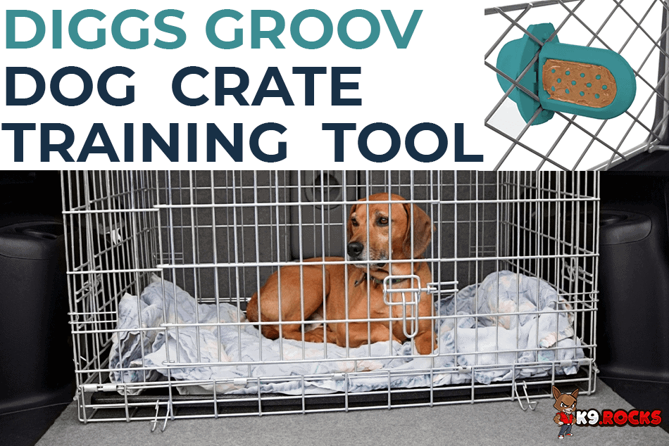 Diggs Groov Dog Crate Training Tool