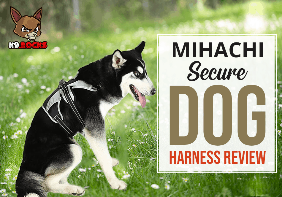 Mihachi Secure Dog Harness Review
