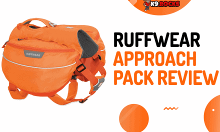 Ruffwear Approach Pack Review