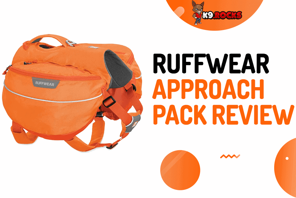 Ruffwear Approach Pack Review