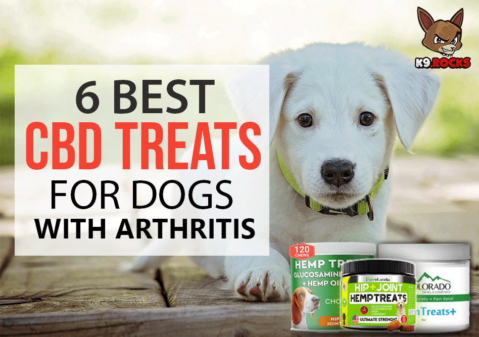 6 Best CBD Treats for Dogs With Arthritis