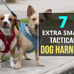 7 Extra Small Tactical Dog Harness