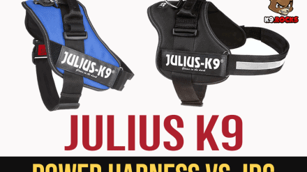Julius K9 Power Harness vs. IDC