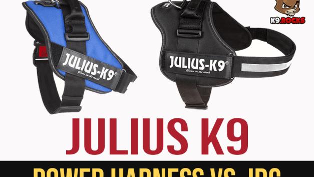 Julius K9 Power Harness vs. IDC
