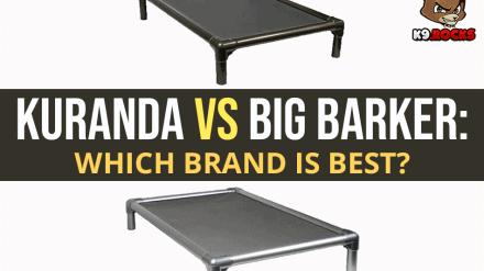 Kuranda vs Big Barker: Which Brand is Best?