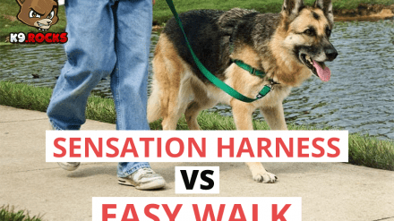 Sensation Harness Vs Easy Walk