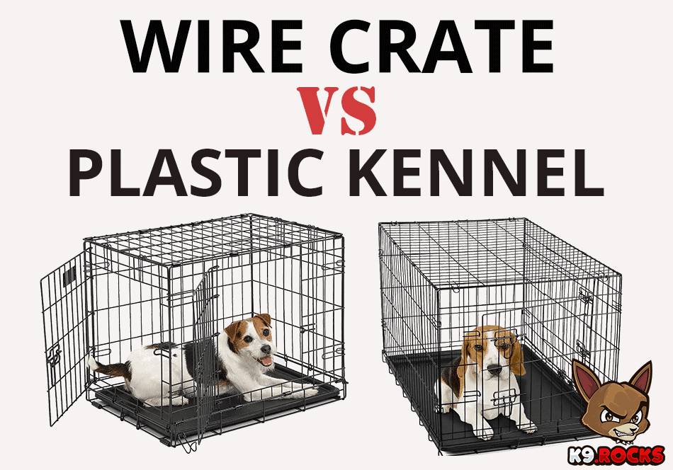 Wire Crate Vs Plastic Kennel