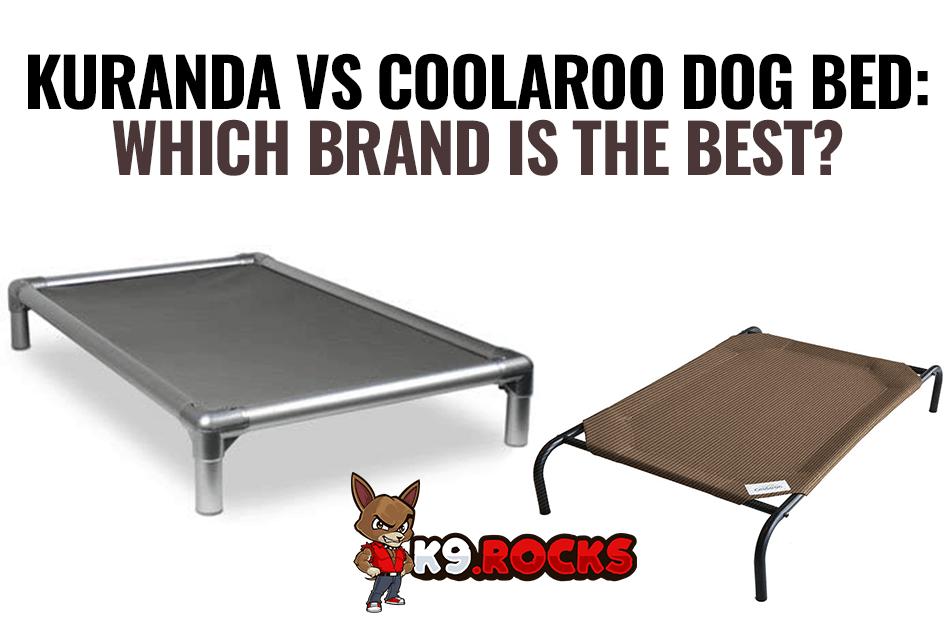 Kuranda vs Coolaroo Dog Bed: Which Brand Is The Best?