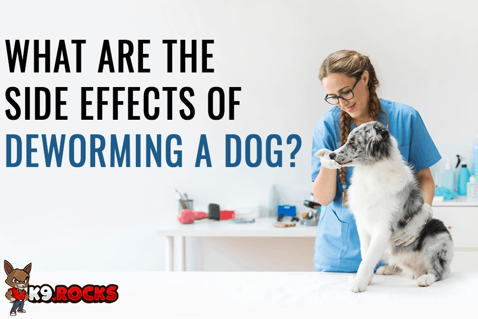 What Are the Side Effects of Deworming a Dog?