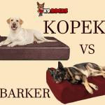 Big Barker vs Kopeks