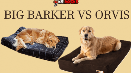 Big Barker vs Orvis