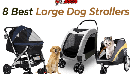 8 Best Large Dog Strollers