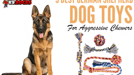 9 Best German Shepherd Dog Toys For Aggressive Chewers