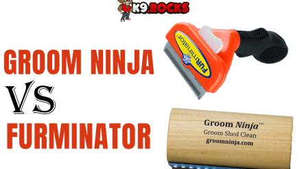 Groom Ninja vs Furminator: Best Grooming Rake