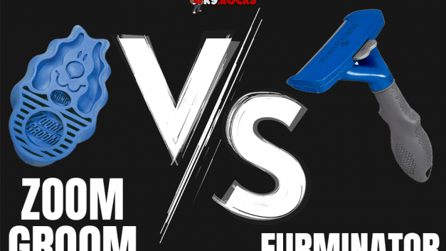 Zoom Groom vs Furminator: Check Out The Best Shedding Brush